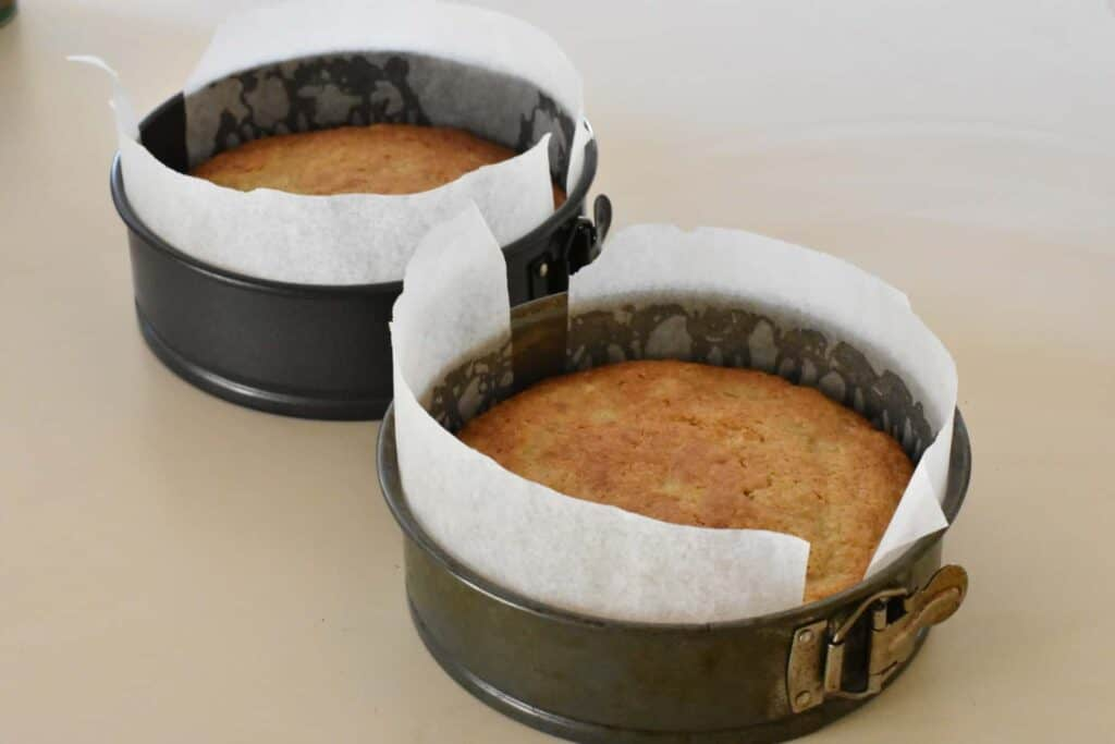 Baked hummingbird cakes in tins.