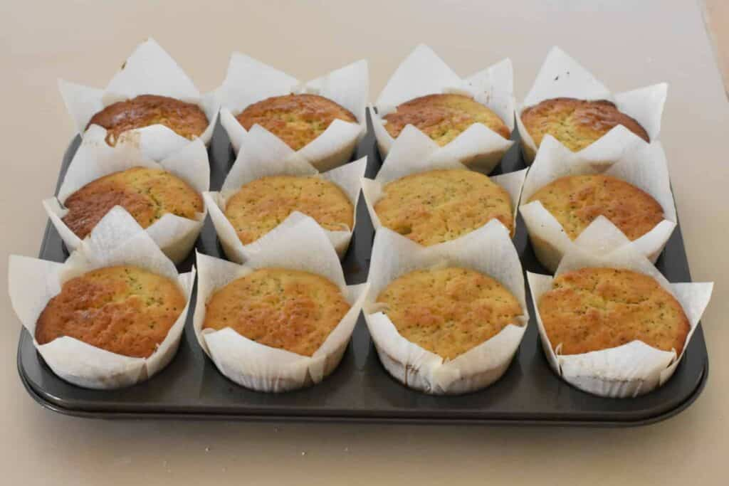 Baked muffins in paper cases in muffin tray.