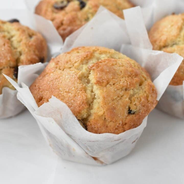 Bakery style chocolate chip muffins fresh out of the oven.