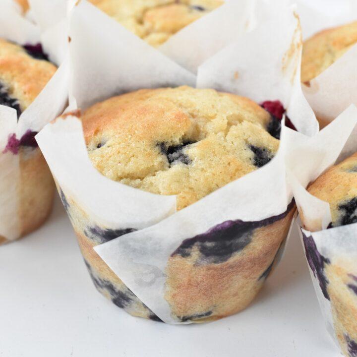 Big & Fluffy Blueberry Muffins